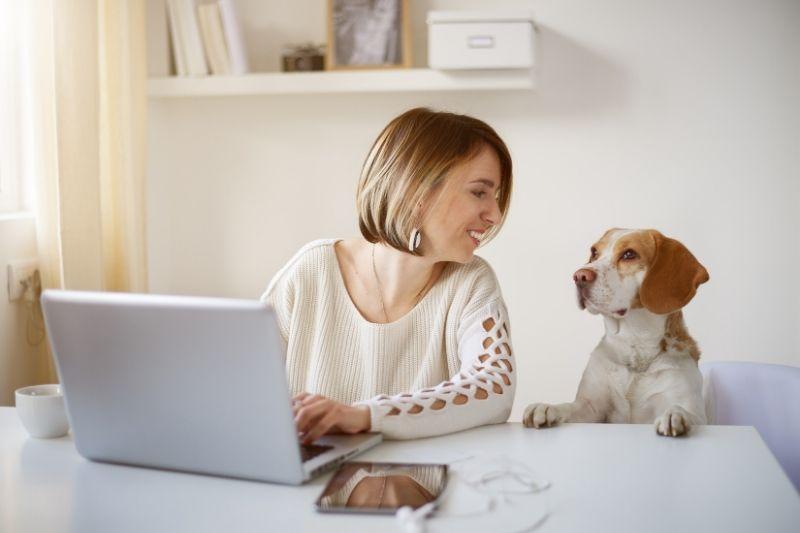 mujer teletrabajando con perro